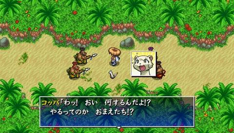 冒险岛寻找第三个秘宝