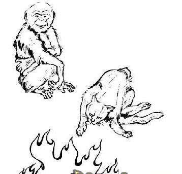 看图猜成语一只猴子与火答案