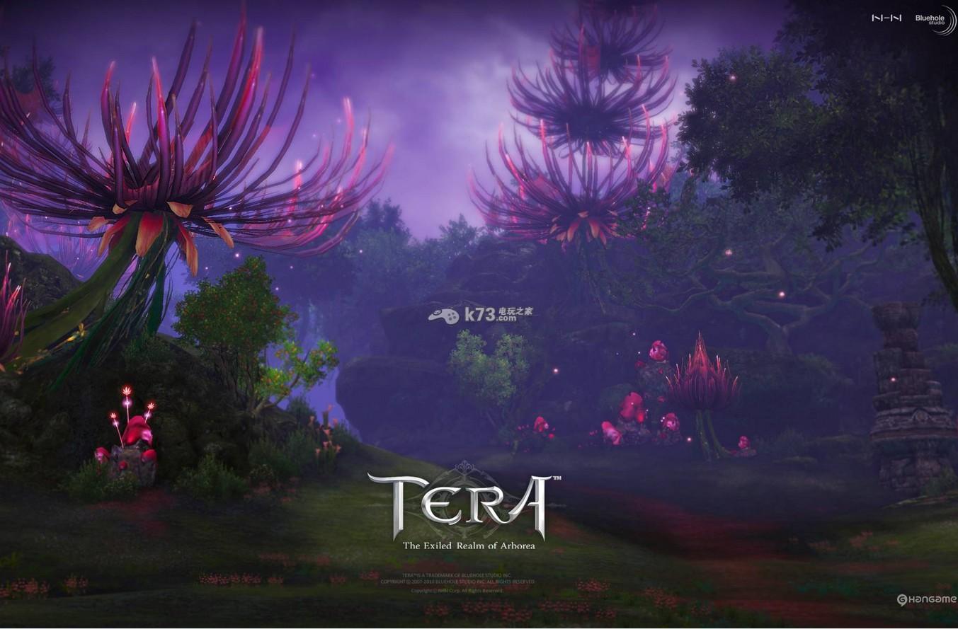 tera紋章系統的使用入門方法